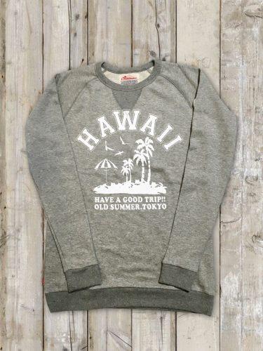 hawaii_gray